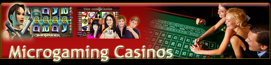 Microgaming-banner